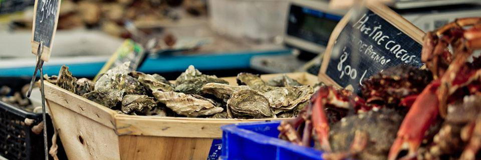 Fresh oysters for sale at a market in Brittany