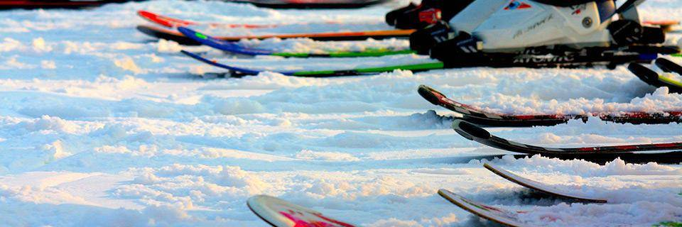 Skis in a line